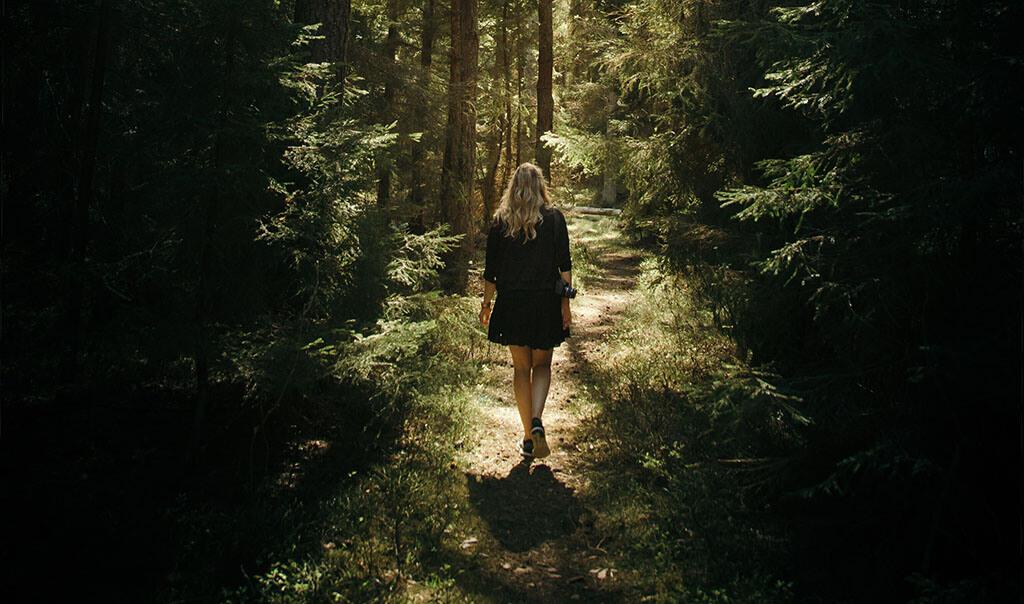 Kantarell-principen hemligheten bakom att få det man vill ha i livet